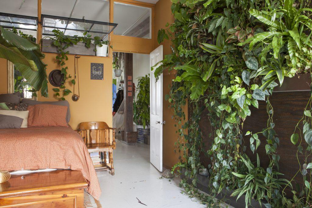 آبیاری گیاهان آپارتمانی به هنگام مسافرت