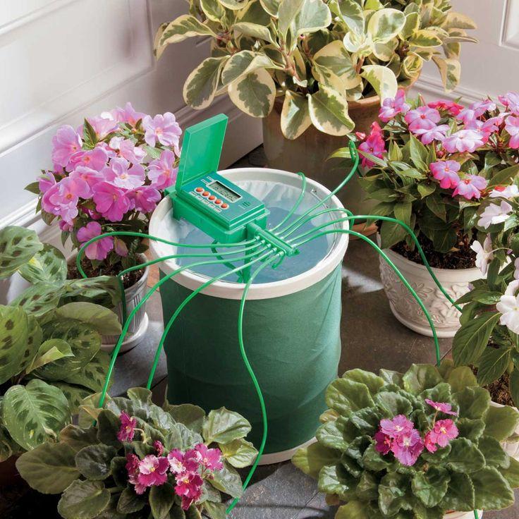استفاده از سیستم قطره ای و تایمر برای آبیاری گیاهان آپارتمانی به هنگام مسافرت